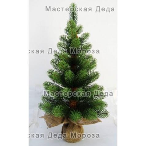 Ель Ладога 60 см