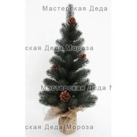 Ель Карелия 60 см