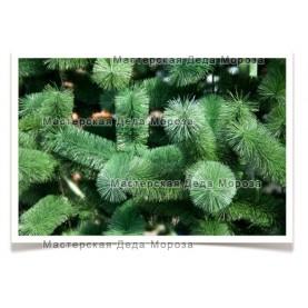 Ель Рублевская - Зелёная (от 3м до 8м) леска